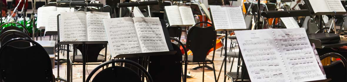 Performer Bio for Jupiter String Quartet | Machias Bay